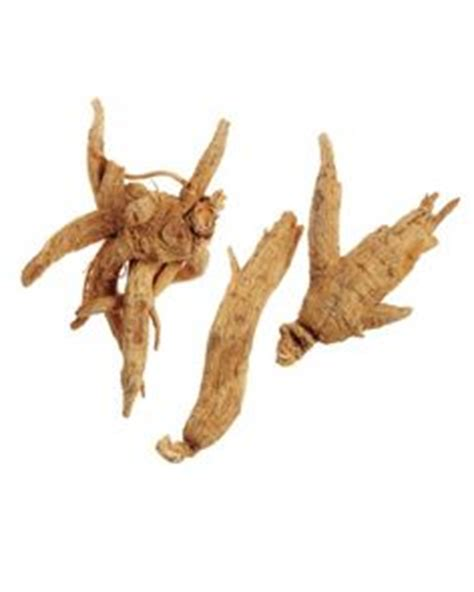 Cold Fx Ginseng Remedy Gets Nod From Health Canada by On Moss Remedies And Trees