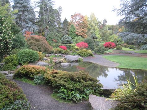 Gardens In Seattle by Washington Park Arboretum Seattle Top Tips Before You Go With Photos Tripadvisor