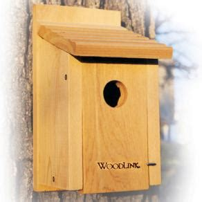 blue bird house hole size woodlink bluebird house 1 1 2 quot hole size