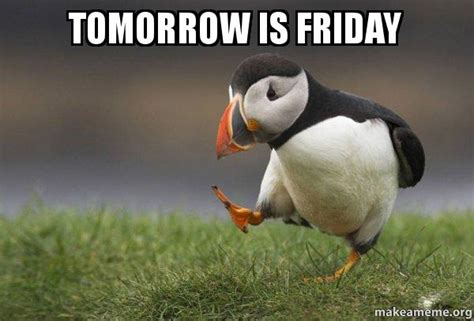 Tomorrow Is Friday Meme - tomorrow is friday unpopular opinion puffin make a meme