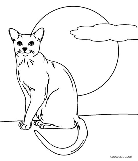 blank cat coloring page free printable cat coloring pages for kids cool2bkids