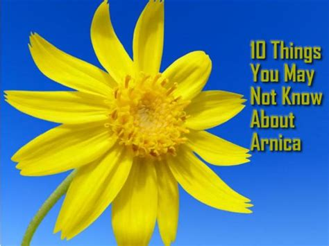 10 things you may not know about adding color to your 10 things you may not know about arnica real time pain