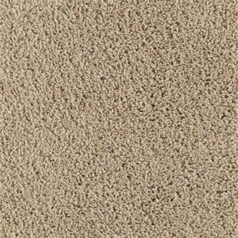 Taupe Paint lifeproof carpet sample ballet ribbon color sugar