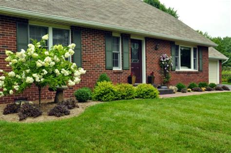 easy front yard landscaping plans easy front yard landscaping ideas front landscaping