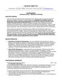 vice president resume template premium resume sles
