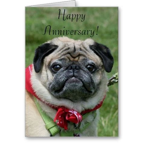 pug anniversary card 17 best images about themed greeting cards on chitre cards and border