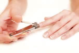 7 tips to cut nails right make up natural beauty