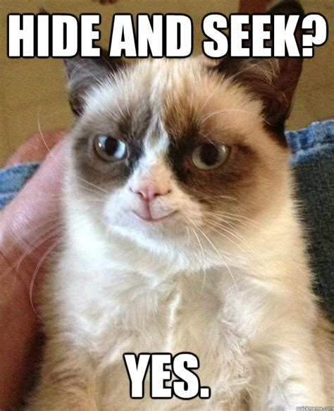 Grumpy Cat Yes Meme - hide and seek yes happy grumpy cat quickmeme