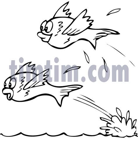 A Flying Fish Colouring Pages Page 2 Flying Fish Coloring Page