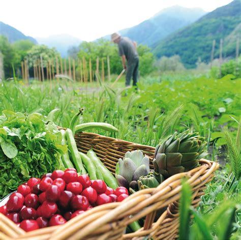 cucinare bio bio cucina naturale