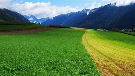 imagenes de verdes praderas 清新护眼的风景桌面壁纸高清 高清桌面壁纸下载 找素材网