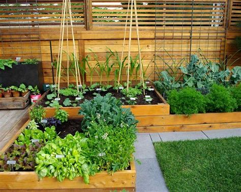 Best Of Astonishing Vege Garden Design Ideas With Small Kitchen Garden Ideas