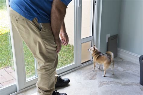 how much does it cost to microchip a how much does it cost to install a door