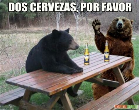 Bear At Picnic Table Meme - patient bear loves to socialize patient bear know your