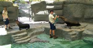 Zookeeper Requirements by Zookeeper Career History Requirements Path Outlook Iresearchnet