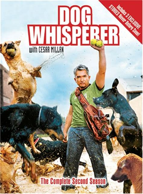 whisperer with cesar millan cesar millan trainer tv host author tvguide