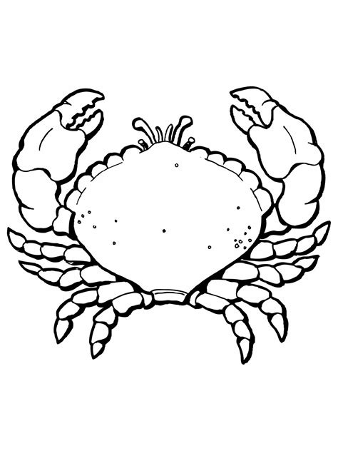 Free Printable Crab Coloring Pages For Kids Free Printable Pictures