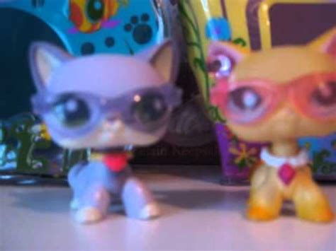 lps dogs and cats my lps collection cats and dogs