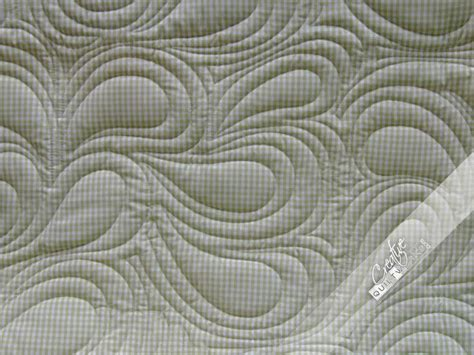Arm Quilting Patterns by 17 Best Images About Machine Quilting Designs On Quilt Designs Quilt And