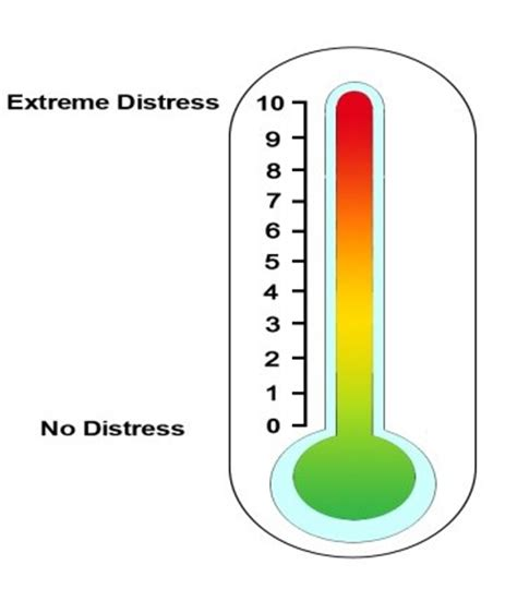 Thermometer Gp Care study the distress thermometer toolkit for palliative holistic care lantum