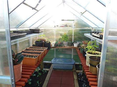Oklahoma Gardening Forum by How To Start Seeds In A Non Heated Greenhouse Plus