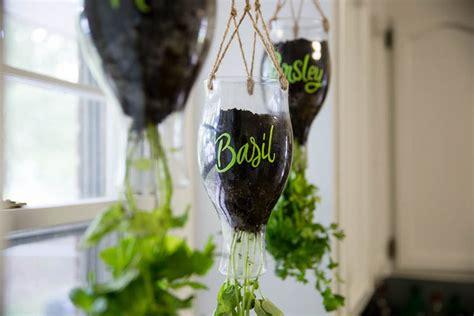 Kitchen Herb Garden Design 5 ideas for your indoor herb garden