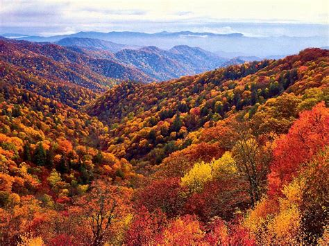when is the best time to see smoky mountain fall colors