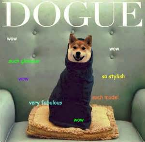 Internet Dog Meme - 25 best ideas about doge meme on pinterest funny doge