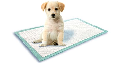 Puppy Mat by Swirl Puppy Mat From Swirl 174