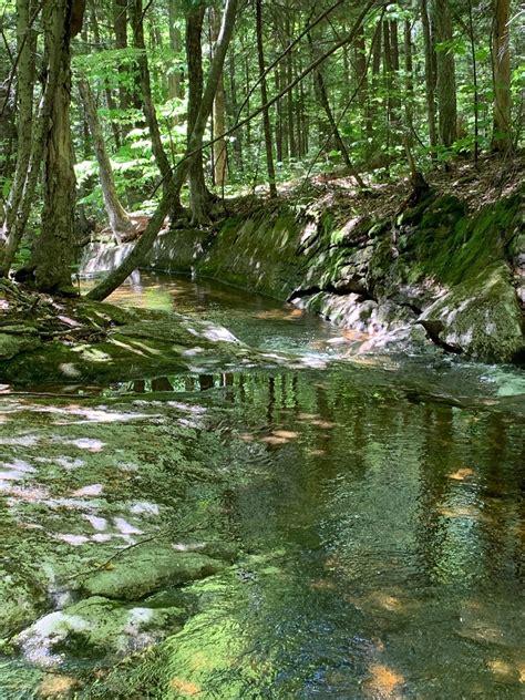 black mountain pond trail  hampshire alltrails