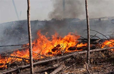 por los incendios en cordoba cristina fernandez de kirchner c 243 rdoba incendio fuera de control arrasa 17 localidades