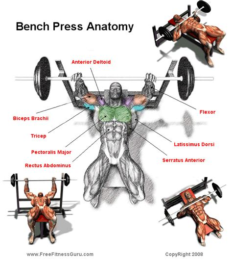 Used Bench Press chest gymhard