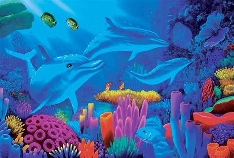 colorful dolphins pre colorful sea plants fishes creative drawings