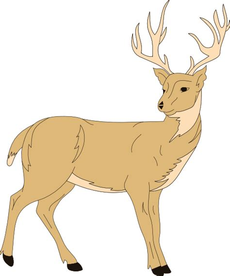 deer clipart deer with fur clip at clker vector clip
