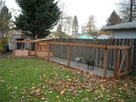 backyard runs 1000 images about backyard bliss runs on