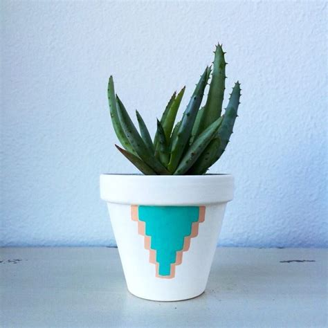 vasi in ceramica per piante vasi per piante vasi per piante tipologie di vasi per