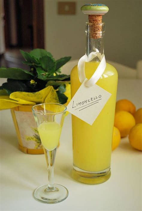 best for limoncello 17 best ideas about limoncello recipe on