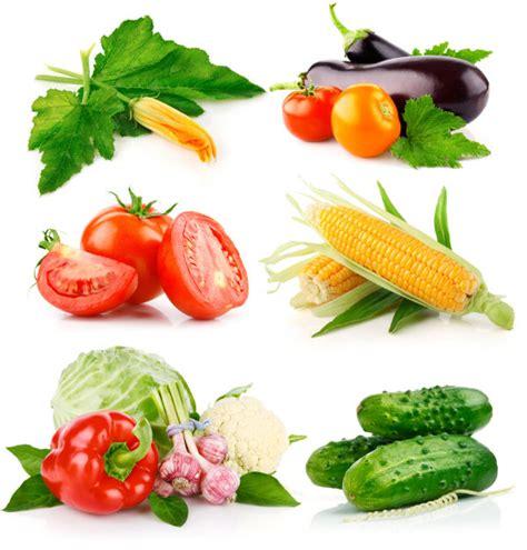 4 vegetables in 4 designer vegetables 02 hq pictures