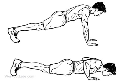 push ups pushups workoutlabs