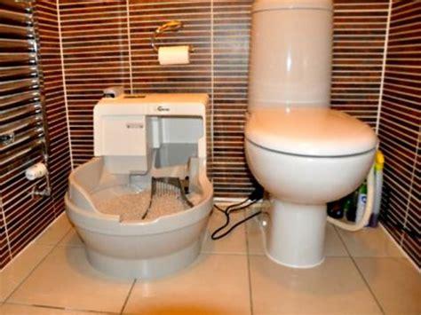 cassetta gatto autopulente bagno autopulente bidet geberit sela water con
