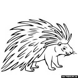 porcupine coloring pages to print coloring pages