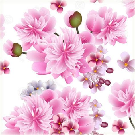 imagenes impresionantes para fondo de pantalla imagenes de rosas para fondo de pantalla grandes en hd