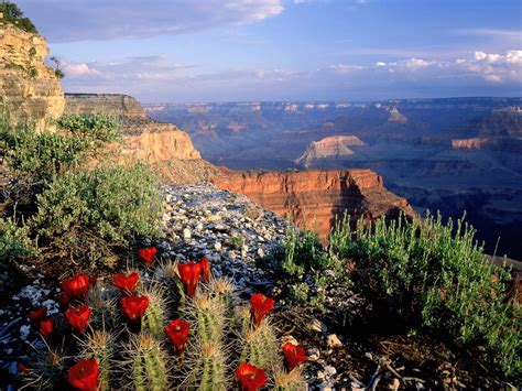best national parks top 10 best national parks in the world