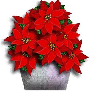 imagenes flores de navidad 174 gifs y fondos paz enla tormenta 174 gifs flores navide 209 as