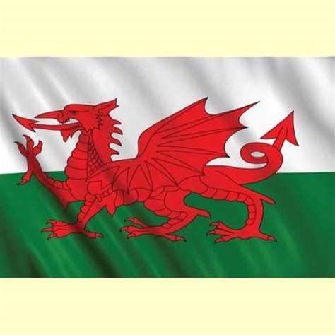 Welsh Flag 3 feet x 5 feet   Party Wizard