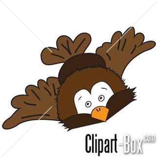 flying owl clipart flying owl clipart clipart suggest