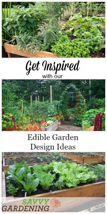 edible garden design ideas  boost production