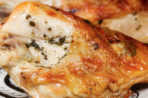 Oven Oxone 4 In 1 kruizing with kikukat toaster oven food roast chicken