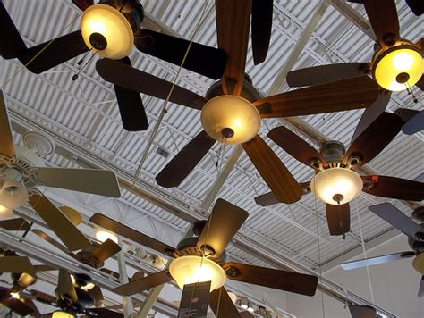 Ceiling Fans On Display At Ceiling Fans Flickr Photo