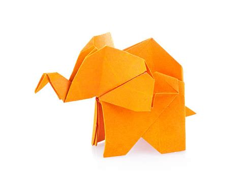 Origami Picture - origami pictures images and stock photos istock